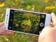 Oppo R1, Harga Masih Stabil Pada Pertengahan April 2014